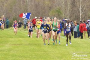 2016 NCAA Cross Country Championships